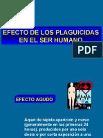 Efectos_en_el_ser_humano(4)