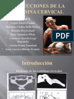 Proyecciones de Cervical