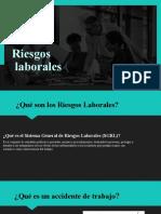 Factores De Riesgos (1)