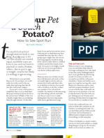 Couch Potato Pets Feature