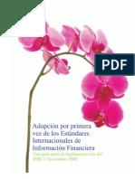 Adopcion 1a vez Deloitte