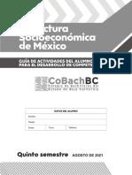 Estructura Socioeconómica de México_2021-2