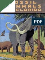 Floridas Fossil Mammals