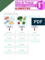 Los Alimentos Para Primer Grado de Primaria