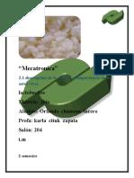ibio karla lactobacilos