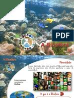 PPT B1- Biosfera_introdução