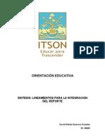 Síntesis...Lineamientos para la integración del reporte