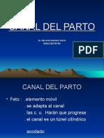 7º CANAL DEL PARTO