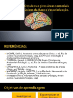 TELENCÉFALO (sulcos e giros áreas sensoriais e