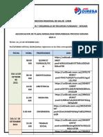 Cronograma de adjudicaci n proceso SERUMS 2021-II