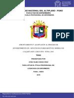 afrontamiento y adaptacion al proceso de envejecimiento Chiqui_Cruz_Ayde_Vilma