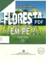 Folh - Por que deixar a floresta em pé (SEMA-AP 2002)