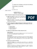 Lab. 1 Riesgos de Auditoria (1)