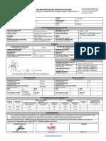 Final WPS, WPQ, PQR - Castro Rojas 2G-firmado-páginas-1-3 SIN REPORTES