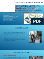 IMPORTANCIA DE ENSAYOS- GRUPO 5 FINAL