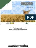 PRODUCAO COMUNITARIA DE SEMENTE DE ARROZ POR PEQUENOS AGRICULTORES