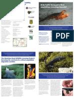 Monkton Wildlife Crossing Project Brochure