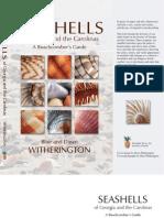 Seashells of Georgia and the Carolinas by Blair and Dawn Witherington
