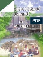 indicadores de DS en Mexico. INEGI
