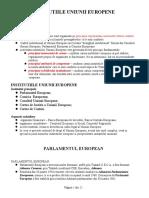 INSTITUTIILE UE - drept comunitar (2)