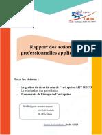 RAPPORT DES APA VF