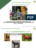 Expl8 Celula Unidade Biodiversidade