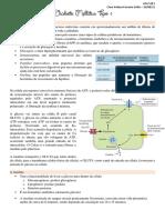 S2P1 - Diabete Mellitus Tipo 1
