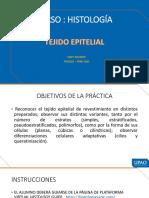s2_ Tejido Epitelial Semana 1 - Powert Point2021 (3) - Copia