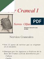 Par Craneal I