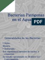 Bacterias Patógenas  en el Agua