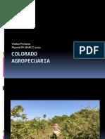 Fazenda Colorado 2021