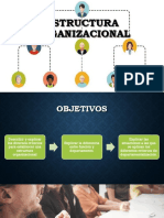 8. Estructura Organizacional