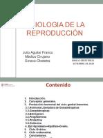 4. Ciclo Reproductivo.ppt