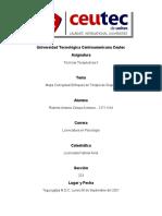 Mapa Conceptual Enfoques de La Terapia de Grupos_Roberto Zelaya
