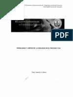 14. Problemas y limites de la oralidad en el  proceso civil F