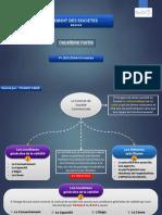 Droit Des Sociétés - Schématisé ( 2ème Partie- Le Contrat de Société)