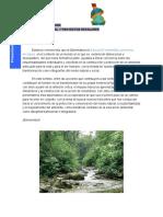 Presentación Diplomatura Educación ambiental