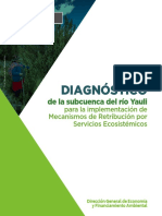 6._diagnostico-yauli