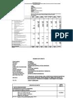 Analitico GG, GS, GL YANAPUSA