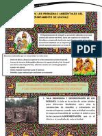 Reconocemos Los Problemas Ambientales Del Departamento de Ucayali (2)