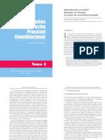 2 y 3. Juan Francisco Guerrero- Control Abstracto de Constitucionalidad