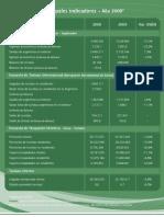 flyers-principales-indicadores-2009