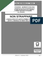 Bologna 2018 2019 Secondaria II Grado