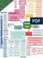 Mapa-Mental-Bioquímica-da-Vida-1