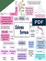 Mapa Mental Sistema Nervoso