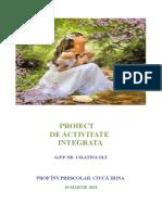 proiect didactic gradul I 34 (1)