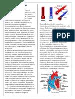 Sistema cardio. pdf