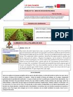 FICHA Nº24 - PARABOLA DEL SEMBRADOR