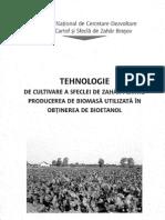 tehnologie cultivare biomasa2008