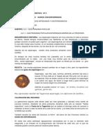 FICHA DE RECURSO TURISTICO   Nº 4 esparragos pdf